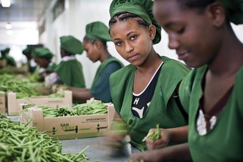 L'avenir du travail en Afrique